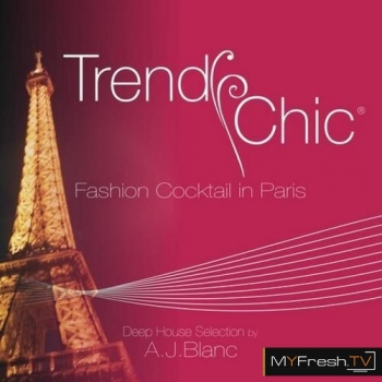 Trendy Chic: Fashion Cocktail in Paris